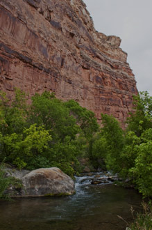 Jones Creek In Jones Hole, Dinosaur National Monument, Utah, copyright 2013 by David Leland Hyde.