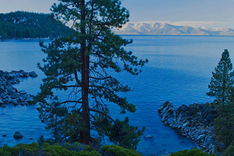 Secret Cove, Ponderosa Pine Trees, Lake Tahoe, Sierra Nevada of California in the distance, copyright 2014 David Leland Hyde. The water quality that gives Lake Tahoe its natural clarity and deep blue color were declining until environmental reforms in the Tahoe Basin turned the situation around. Lake Tahoe is clearer today than it was five years ago.