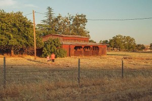 Julie, Her Granddaughter and Her Horse Barn, Wick's Corners Near Oroville, California, copyright 2015 David Leland Hyde.