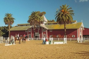 Racing Team Practice, Stanford Red Barn Equestrian Center, Stanford, California by David Leland Hyde.